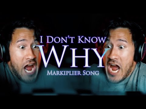 """""""I DON'T KNOW WHY"""" (Markiplier Remix)   Song by Endigo"""