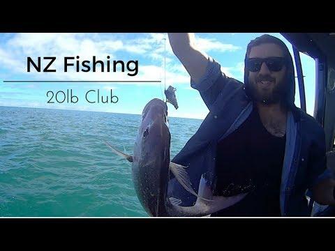 NZ Fishing 20lb Club