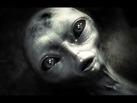 PROJECT BLUE-BOOK INTERVIEW: Grays Are Humans From The Future 1101001 STOP THE EVIL MESSIAH :)  Hqdefault
