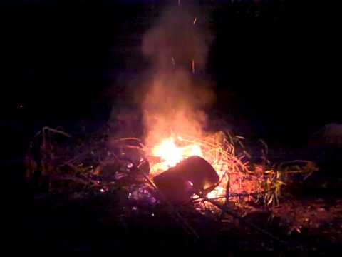 Outdoor Fire with Relaxing Soothing Nature Sounds