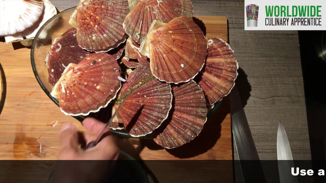 How to clean Sea Scallops - How to remove sea scallops from there shells -