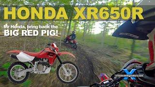 HONDA XR650R REVIEW: bring back the big red pig!