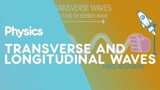 Transverse and Longitudinal Waves | Waves | Physics for All | FuseSchool