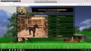 A virtual horse #1