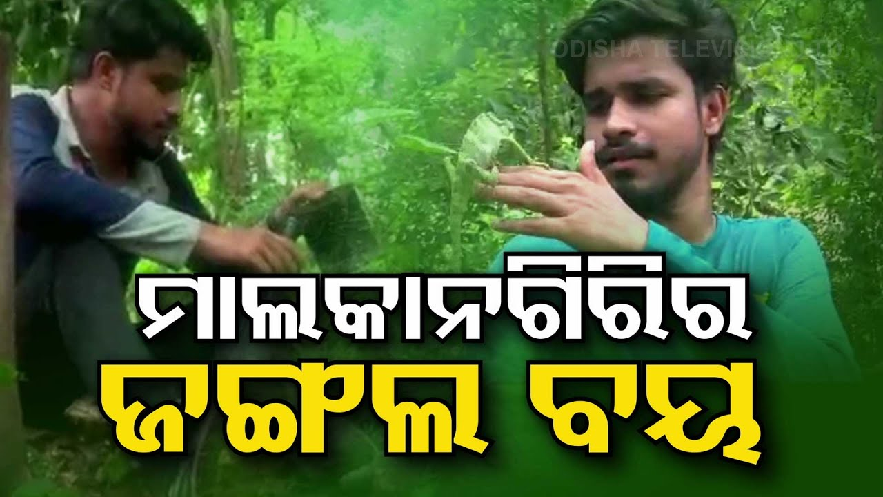 Educated Youth Turns Jungle Boy For His Love For Wildlife