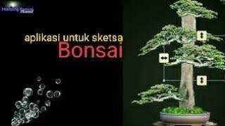 Cara desain bonsai dengan mudah di Aplikasi My Bonsai