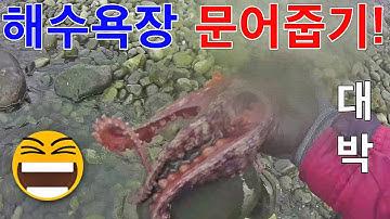 해수욕장 문어낚시! 눈앞에 문어가!! 초대박ㅋㅋ 해루질, 채비, 액션, 방법, 요령 fishing for octopus on the beach [괴짜낚시TV]