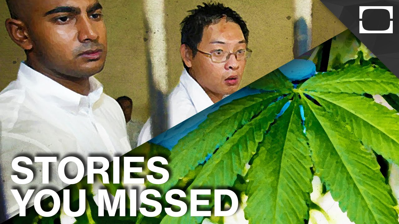 Italian weed the bali nine and other stories you missed for And other stories italia