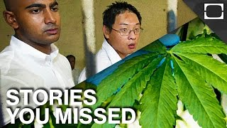 Italian Weed, The Bali Nine And Other Stories You Missed