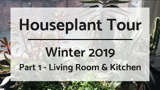 Part 1: Houseplant Tour 2019 | 220+ Plants | Living Room & Kitchen
