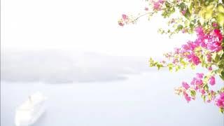J.シュトラウス2世: ワルツ「北海の絵」 Op.390[ナクソス・クラシック・キュレーション #ニューイヤー]