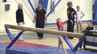 Gambar cover Sarah Clark Gymnastics || Level 8 State Meet || Beam Champion