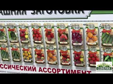 Обзор лучших сортов семян овощей