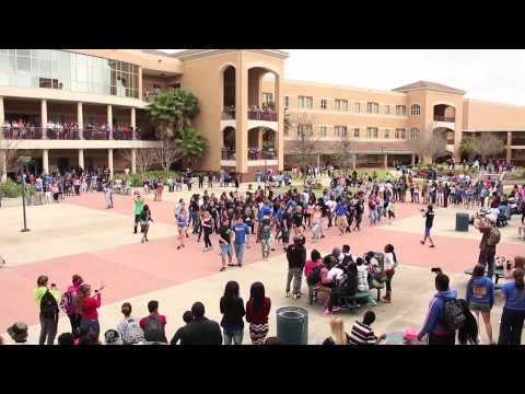 Mainland High School -