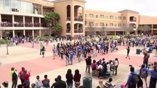 "Mainland High School - ""We"