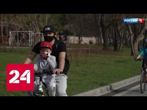 Коронавирус нипочем: СК заинтересовали массовые гуляния в Новосибирске - Россия 24