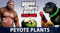 GTA Online - All 76 Peyote Plants Locations (Play as an Animal in GTA Online)