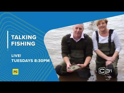 Channel 31 - Melbourne Community Television