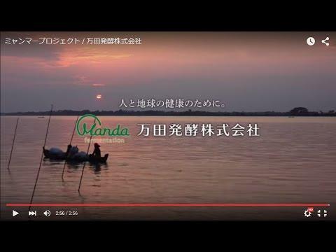 新TVCM「ミャンマープロジェクト」篇のご紹介 10月2日(金)から放映開始