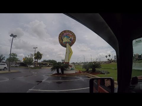 A Visit To The Mellow Mushroom