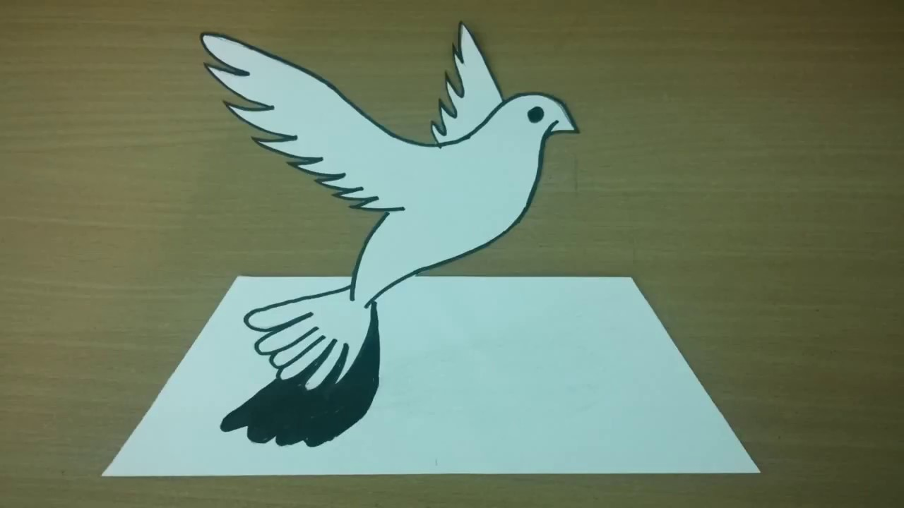 How To Draw Pigeon Bird 3d Drawing For Kids Easy Step By Step