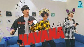 جين ، جيمين ، وشوغا يرقصون على اغنية هافانا(havana)