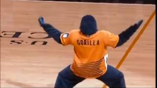 The Phoenix Suns Gorilla 2014 dunk highlight reel