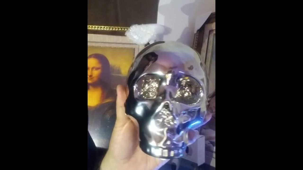 Arlo death skull camera hack home automated mona lisa secret wireless  camera napoleon developed 2017