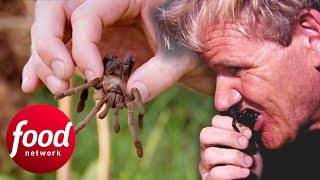 Gordon Ramsay Tries To Eat A Fried Spider In Cambodia | Gordon's Great Escapes