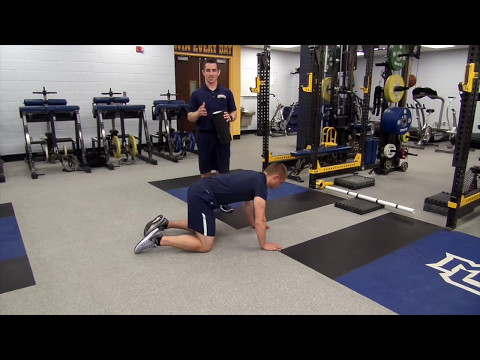 Healthy Hips Happy Athlete - A Multifactorial Approach to Fortifying the Athletic Hip and Groin