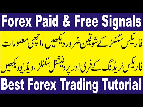 Forex Paid and Free Signals | Tani Fx Signal app Trading tutorial in Urdu and Hindi For beginners