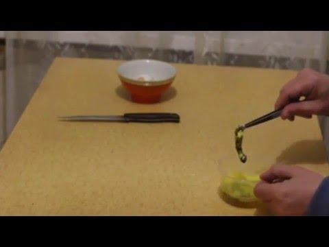 Новое Видео. Как сделать гомункула Homunculus.  Пятая попытка!