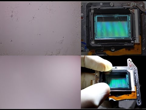 How to Clean / Remove fungus and dust from sensor DSLR Camera, Canon assembly guide.
