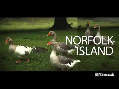 Norfolk Island Tourism 360° of Nature and Outdoors