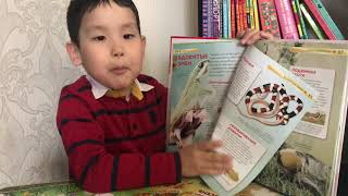 Обзор детской энциклопедии про змей на канале Арнур Ученый