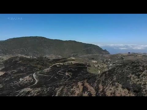France 24:Gran Canaria's UNESCO archaeological zone ravaged by wildfires