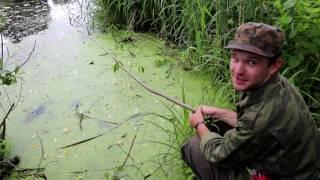 Рыбалка На Палку #2 | Fishing On A Stick #2