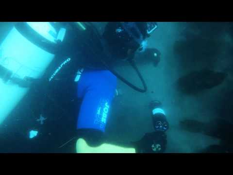 Treasure diving Ireland 2015