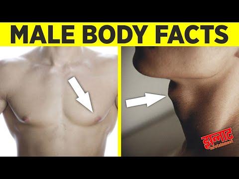 पुरुषों के शरीर से जुडी कुछ दिलचस्प बातें   Male body facts you probably didn't know about