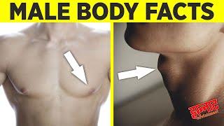 पुरुषों के शरीर से जुडी कुछ दिलचस्प बातें | Male body facts you probably didn't know about