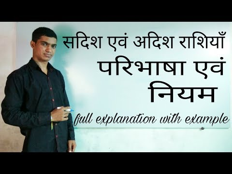 scalar and vector quantities in hindi full explanation with example