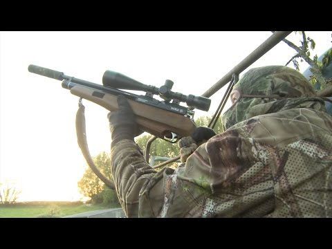 The Airgun Show – hunting for rabbits, pigeons and squirrels, PLUS the BSA R-10 Mk2 on test