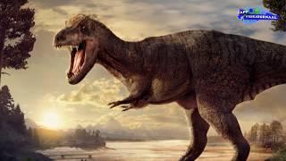 Het raadsel van de Tyrannosaurus rex