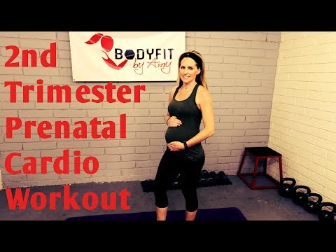 20 Minute 2nd Trimester Prenatal Cardio Workout-- (but good