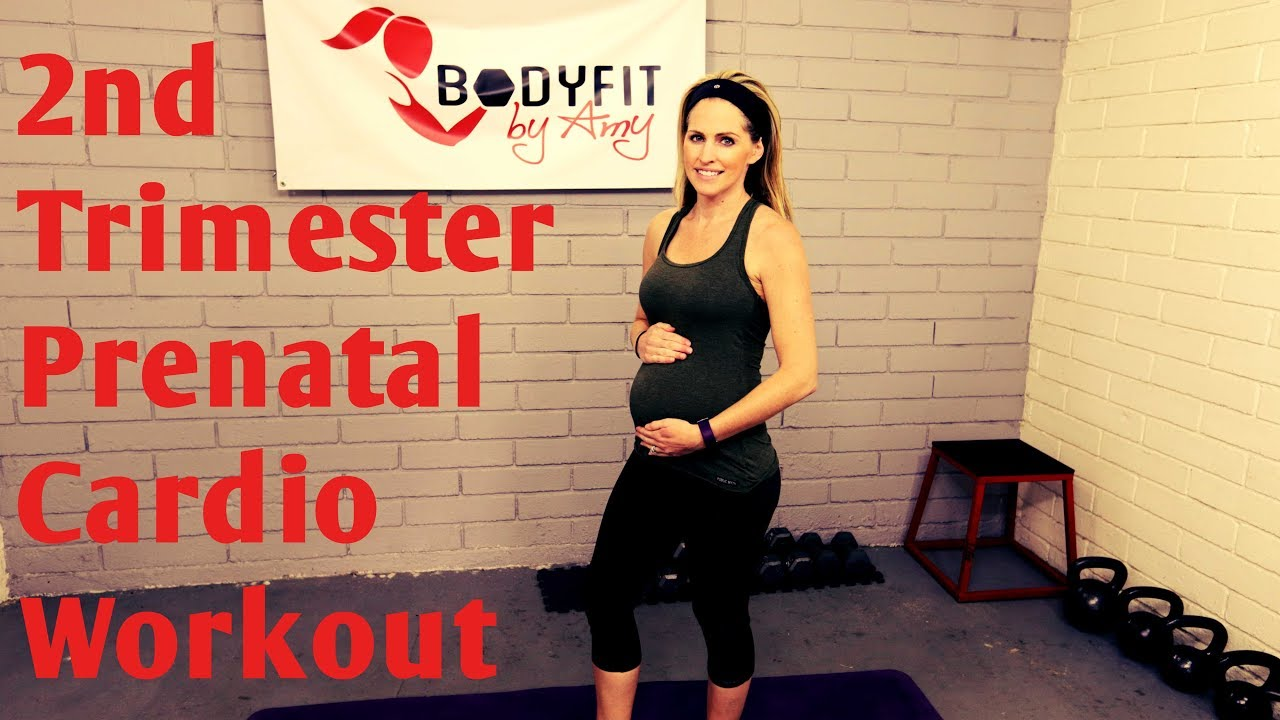20 Minute 2nd Trimester Prenatal Cardio Workout-- (but good for ALL  Trimesters of Pregnancy!)