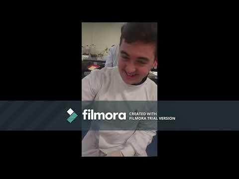 Gammarus video Conor Conway