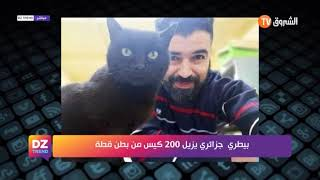 بيطري جزائري يزيل 200 كيس من بطن قطة
