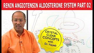 Renin Angiotensin Aldosterone System 2/7