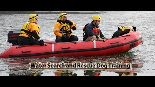 Water Search And Rescue Dog Training - Moraine State Park