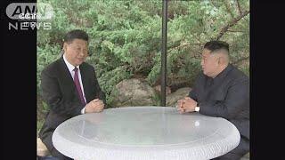 習主席 初の訪朝終え帰国「北朝鮮の努力支持」(19/06/22)